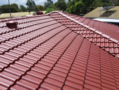 roof painter transformation