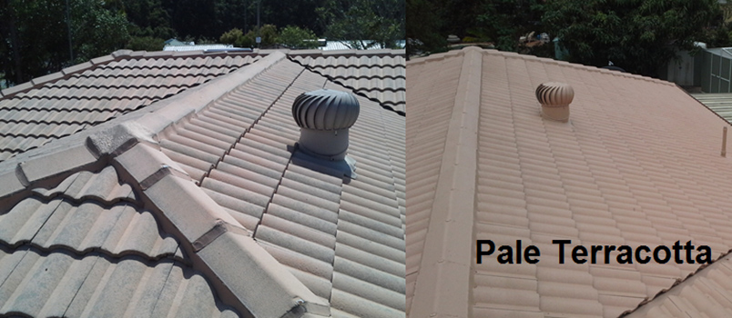 roof painting before and after