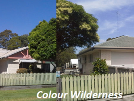 Wilderness-before-and-after